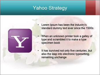 0000060739 PowerPoint Templates - Slide 11