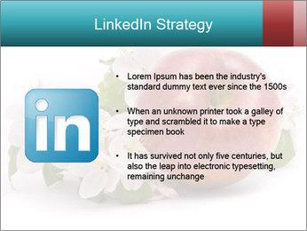 0000060739 PowerPoint Templates - Slide 12