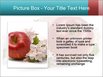 0000060739 PowerPoint Template - Slide 13