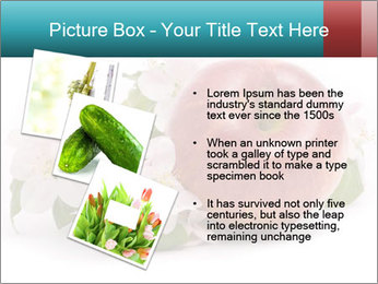 0000060739 PowerPoint Template - Slide 17