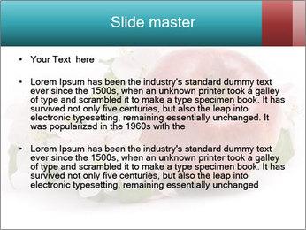 0000060739 PowerPoint Templates - Slide 2