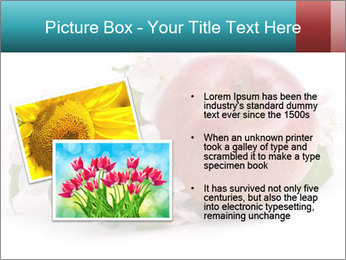 0000060739 PowerPoint Template - Slide 20
