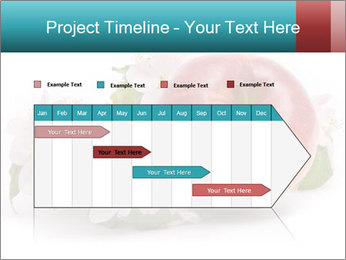 0000060739 PowerPoint Template - Slide 25