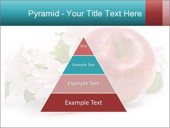 0000060739 PowerPoint Templates - Slide 30