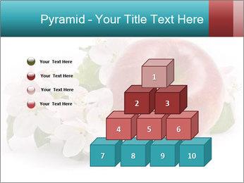 0000060739 PowerPoint Templates - Slide 31