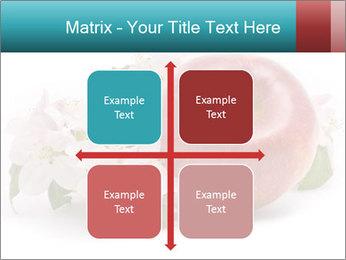 0000060739 PowerPoint Templates - Slide 37
