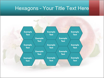 0000060739 PowerPoint Templates - Slide 44