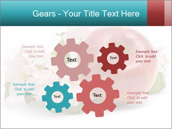 0000060739 PowerPoint Templates - Slide 47