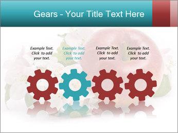 0000060739 PowerPoint Templates - Slide 48
