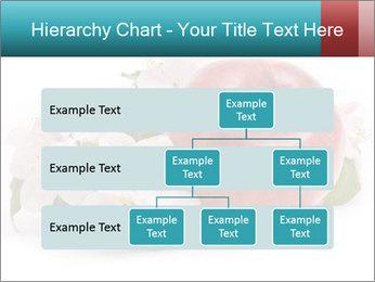 0000060739 PowerPoint Templates - Slide 67