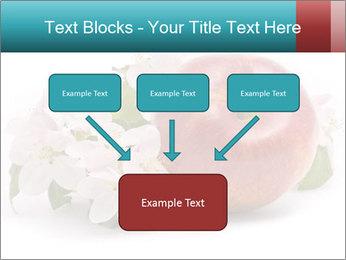 0000060739 PowerPoint Templates - Slide 70