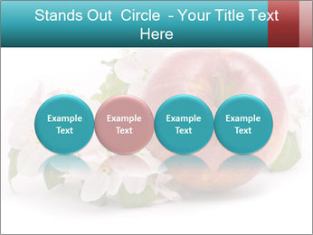 0000060739 PowerPoint Template - Slide 76