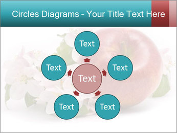 0000060739 PowerPoint Templates - Slide 78