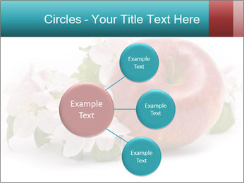 0000060739 PowerPoint Templates - Slide 79
