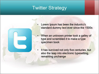 0000060739 PowerPoint Template - Slide 9