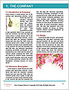 0000060739 Word Templates - Page 3