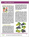 0000060740 Word Template - Page 3