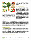0000060740 Word Template - Page 4