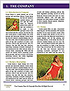 0000060764 Word Template - Page 3