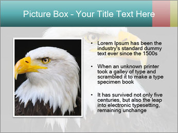 0000060767 PowerPoint Templates - Slide 13