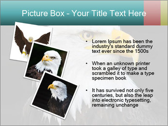0000060767 PowerPoint Templates - Slide 17