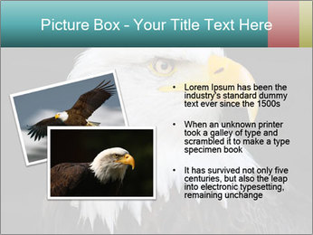 0000060767 PowerPoint Templates - Slide 20