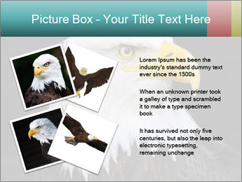 0000060767 PowerPoint Templates - Slide 23