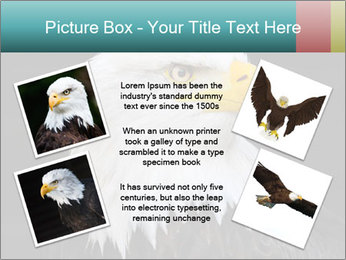 0000060767 PowerPoint Templates - Slide 24