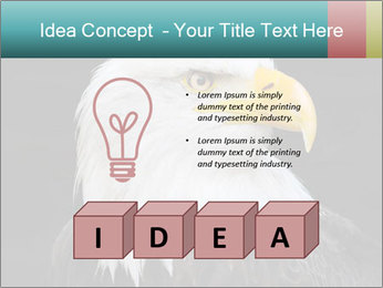 0000060767 PowerPoint Templates - Slide 80