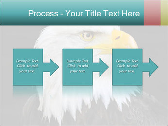 0000060767 PowerPoint Templates - Slide 88