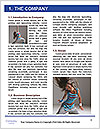 0000060779 Word Template - Page 3