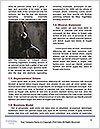 0000060779 Word Template - Page 4