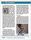 0000060781 Word Template - Page 3