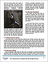 0000060781 Word Template - Page 4