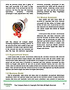 0000060791 Word Templates - Page 4