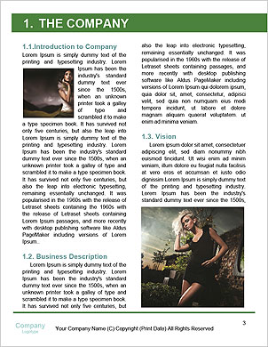 0000060803 Word Template - Page 3
