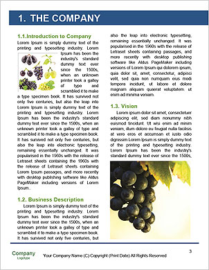 0000060807 Word Template - Page 3