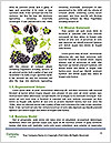 0000060807 Word Templates - Page 4