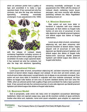 0000060807 Word Template - Page 4