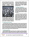 0000060809 Word Template - Page 4