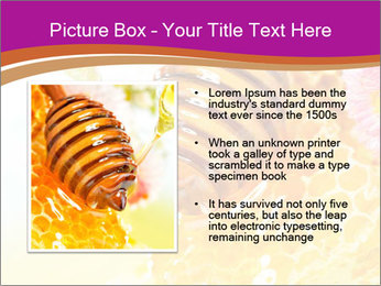 0000060816 PowerPoint Template - Slide 13