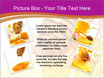 0000060816 PowerPoint Template - Slide 24