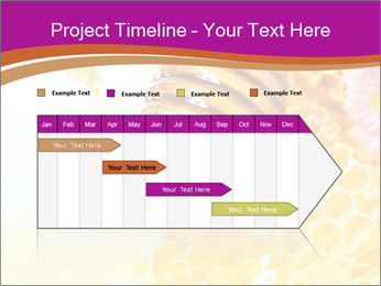 0000060816 PowerPoint Templates - Slide 25