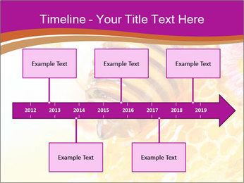 0000060816 PowerPoint Template - Slide 28