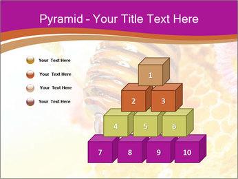 0000060816 PowerPoint Templates - Slide 31