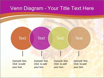0000060816 PowerPoint Templates - Slide 32
