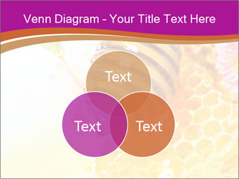 0000060816 PowerPoint Template - Slide 33