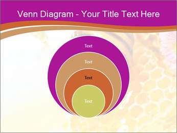 0000060816 PowerPoint Template - Slide 34