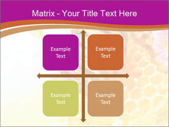 0000060816 PowerPoint Template - Slide 37