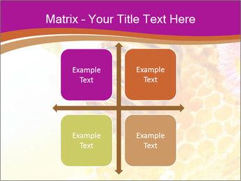 0000060816 PowerPoint Templates - Slide 37